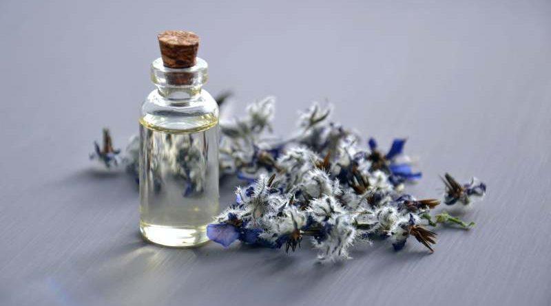 трендове зо маркови парфюми 2021